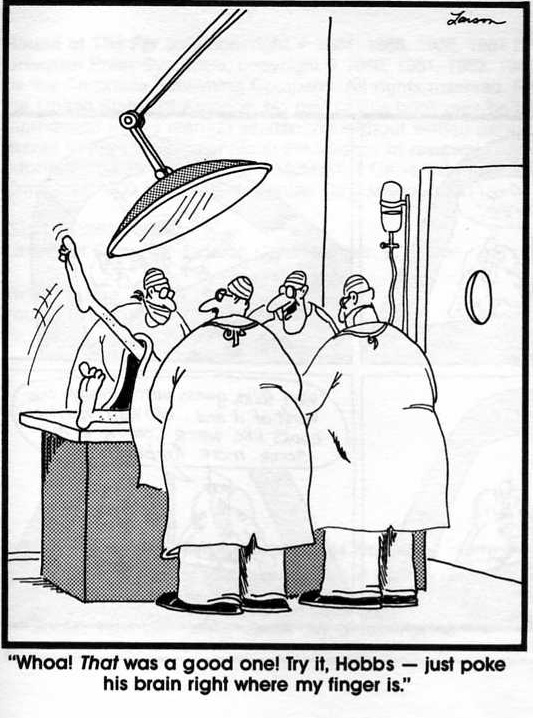 far side_brain_bloopers
