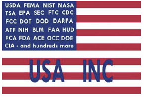 usa-inc-flag