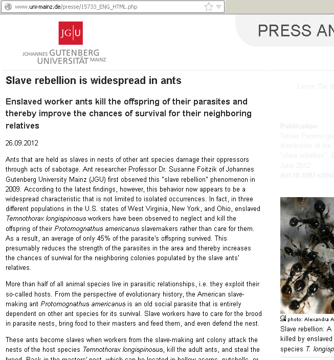 slave-rebellion-in-ants